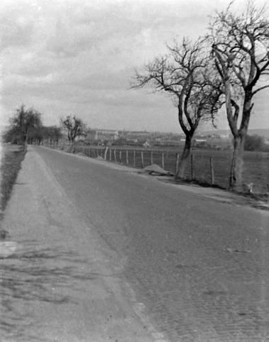 Chaussee nach Nordhausen 1953